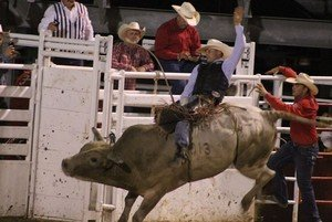 74th Annual Rodeo of the Ozarks